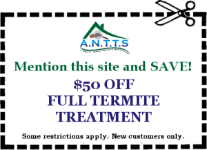 Dallas - Fort Worth Termite Treatment Coupons